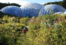Жизнь под куполом на Земле: огромные оранжереи, концерт Бьорк и мечты о сохранении планеты
