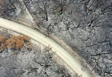 Австралийские миллиардеры пожертвовали $75 млн на борьбу с лесными пожарами после критики актрисы