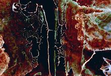 Под землей обнаружена неизвестная жизнь