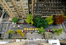 Хитрый паркомат. Как власти мегаполисов зарабатывают на штрафах