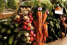 Органические продукты губят биосферу планеты
