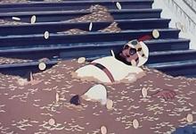 Золотая антилопа: как научиться правильному отношению к деньгам