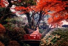 Полный дзен: японский подход к индустрии красоты