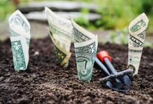 Переоценка ценностей. Повышение финансовой грамотности приведет к революции финтеха