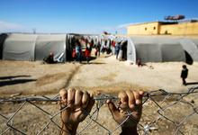 Новая волна. Как Европа пытается решить миграционный кризис