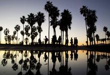 Перелетные стартапы: почему Кипр может стать новой Кремниевой долиной