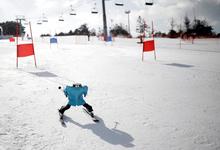 Зима близко: почему искусственный интеллект и робототехнику ждут сложные времена