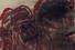 Розмари Трокел, Без названия, эстимейт £3 000 — 5 000