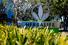 Билл Экман заставил акции Herbalife «потерять в весе»