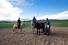 Nomadic Journeys (Улан-Батор, Монголия)