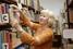 Библиотекарь, документовед, архивариус