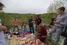 Пикник в «Соснах»