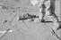 Дэвид Скотт во время второго полноценного выхода на лунную поверхность. На левой руке астронавта можно увидеть хронограф Bulova, который в прошлом году также был выставлен на RR Auction