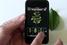 Приложение для распознавания деревьев по изображению их листьев Leafsnap