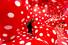 Фрагмент выставки японской художницы Яей Кусамы «Теория бесконечности»
