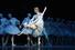 Гамбургский балет Джона Ноймайера. «Стеклянный зверинец» 5 декабря 2019 – 31 января 2020