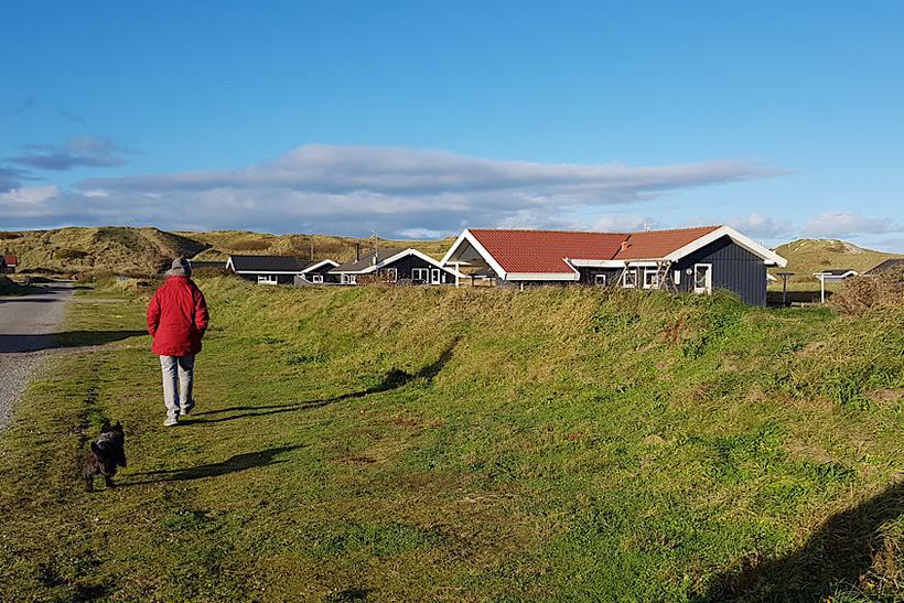 2. Дания