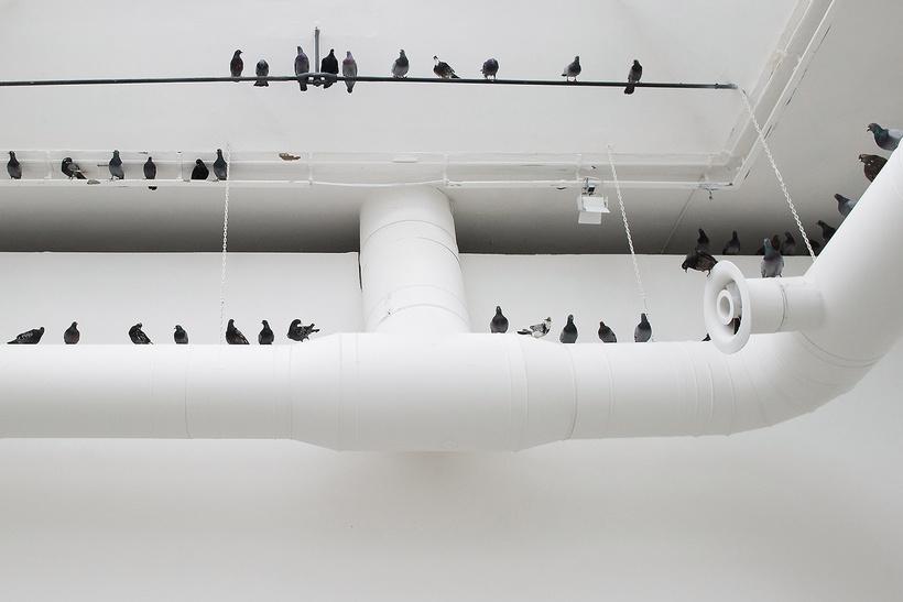 Инсталляция «Другие» (Others), 2005