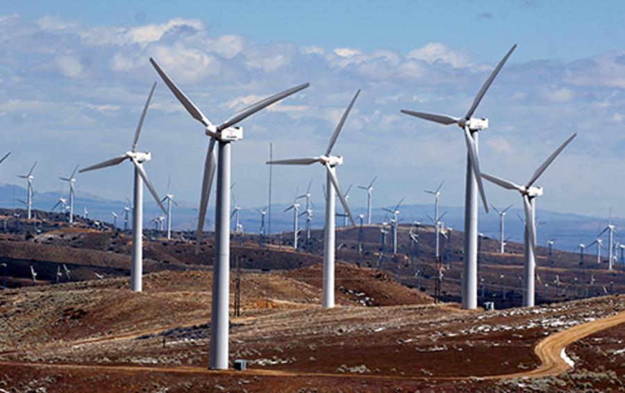 Экологический ущерб от ветрогенераторов зачастую преувеличивают.