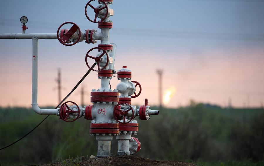 «Дружба» обеспечивала 8% годового импорта Евросоюза, но после загрязнения нефти Белоруссия полностью остановила прокачку.