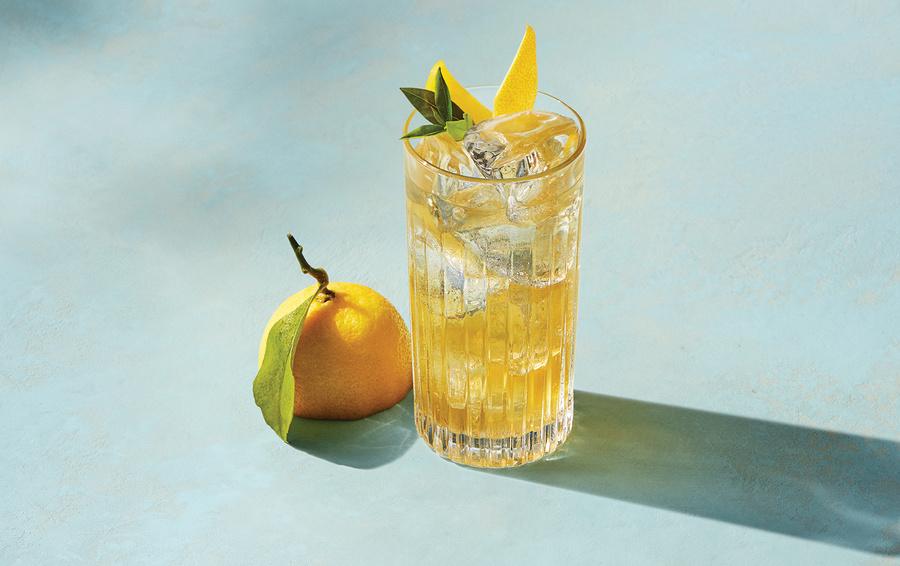Lemon Garnish