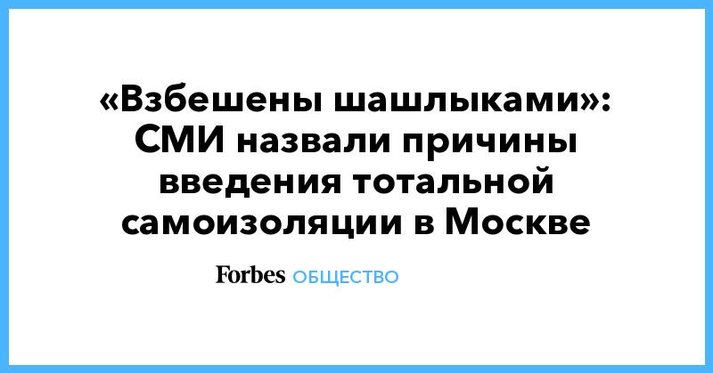 «Взбешены шашлыками»: СМИ назвали причины введения тотальной самоизоляции в Москве
