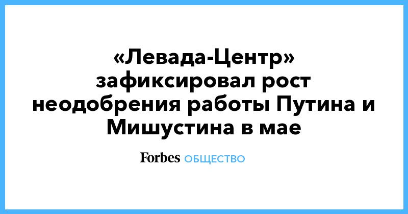 «Левада-Центр» зафиксировал рост неодобрения работы Путина и Мишустина в мае