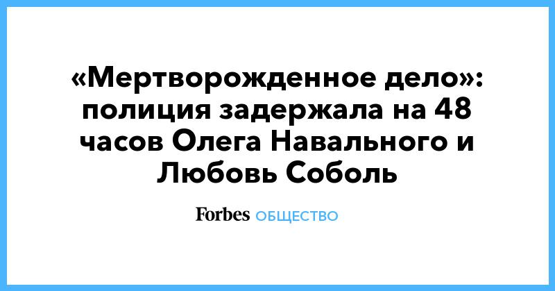 «Мертворожденное дело»: полиция задержала на 48 часов Олега Навального и Любовь Соболь